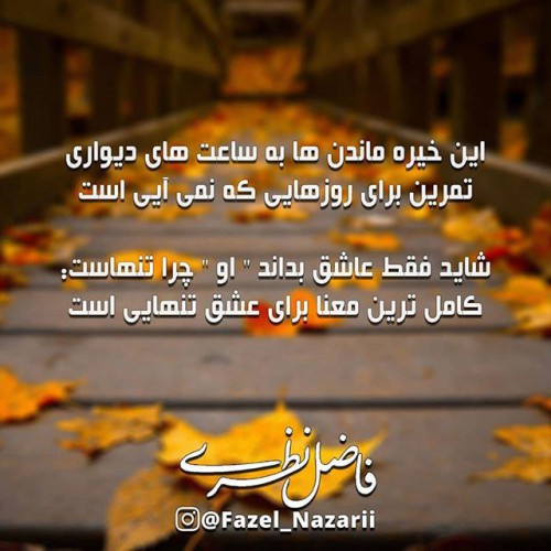 عکس نوشته از نوشته های فاضل نظری