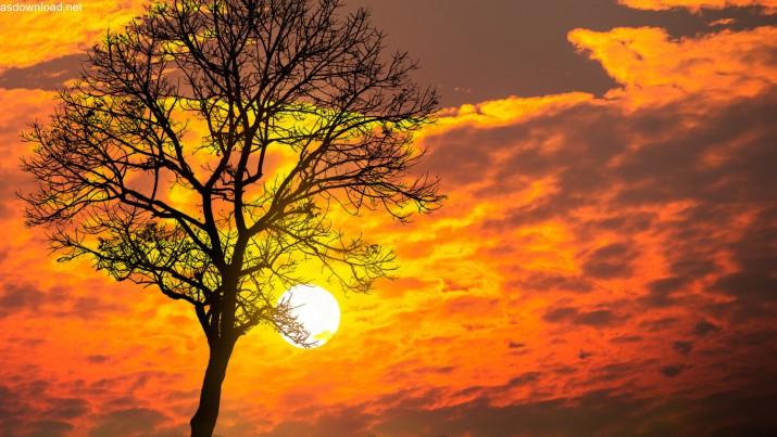 Photo of روز میلاد خورشید چه روزی است – عکس پروفایل جشن خرم روز
