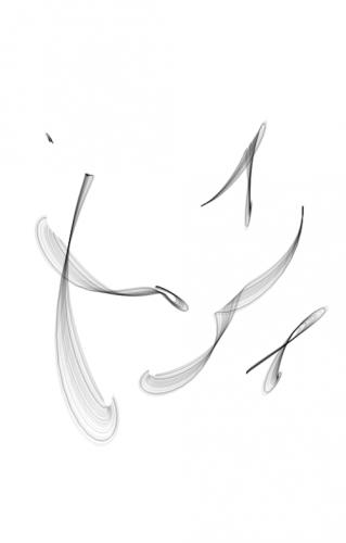 طراحی لوگو پژمان مخصوص پروفایل