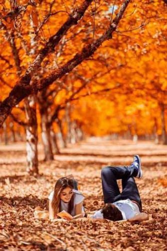 مطالعه عاشقانه در دل طبیعت
