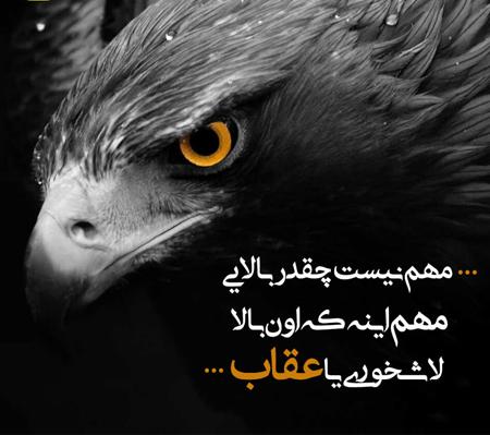 عکس نوشته و پروفایل خاص تیکهدار و فاز سنگین