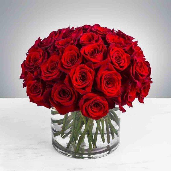 متن ادبی تبریک ازدواج دوست و همکار + جملات ادبی زیبا برای تبریک ازدواج