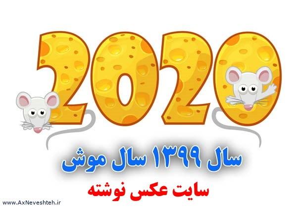 سال 1399 نماد چه حیوانی است - خصوصیات متولدین سال موش