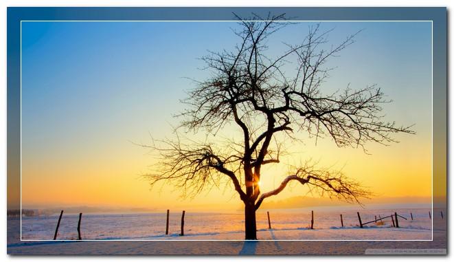 عکس های پروفایل زمستانی فانتزی شیک و زیبا سری دوم